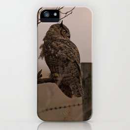 GreatHorned Owl on tree limb iPhone Case