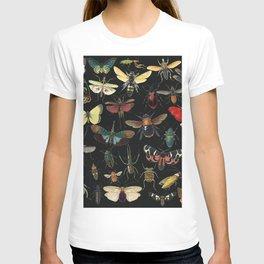 Lovely Butterfly Black T-shirt
