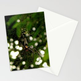 oooh... Stationery Cards