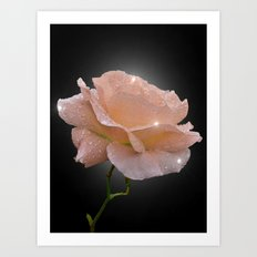 Crystal Rose Art Print