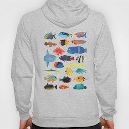 Tropical Fish chart Hoody