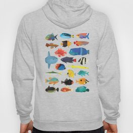 Tropical Fish chart Hoody
