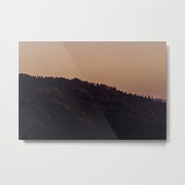 Let The Redwood Come Over Metal Print