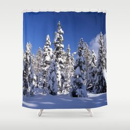 Snow covered trees in the forest. Winter day with blue sky. Shower Curtain