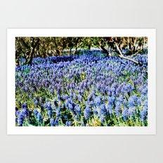 summer solstice 7 Art Print