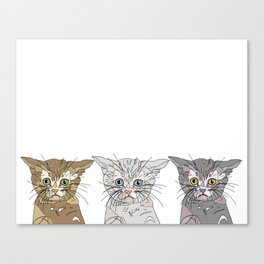Triple Kitties Canvas Print