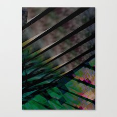 digipalms Canvas Print