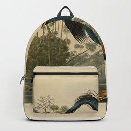 Vintage Bird Print - Birds of America - 217 Louisiana Heron (1838) Backpack