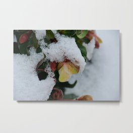 I promise you Spring Metal Print