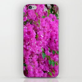 Illustration,  photo, nature, flowers iPhone Skin
