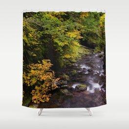 Columbia River Gorge Region, Oregon River Color Photo Footbridge River in an Oregon Forest Shower Curtain