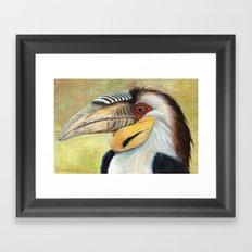 Wreathed Hornbill AQ33 Framed Art Print
