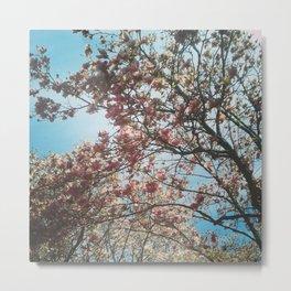 Spring Cometh! Metal Print