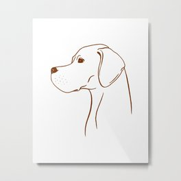 English Pointer (White and Brown) Metal Print