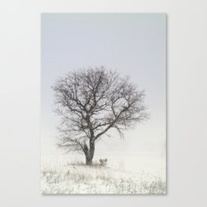 Alone in the Storm Canvas Print
