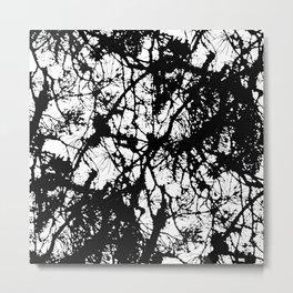 Light through the branches Metal Print
