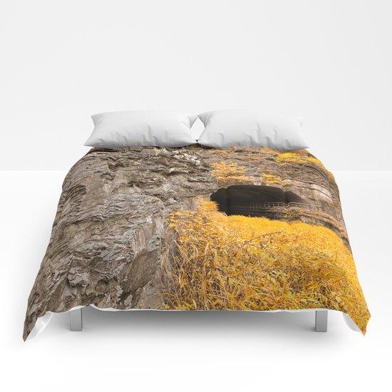 Paw Paw Tunnel - Golden Age Nostalgia Comforters