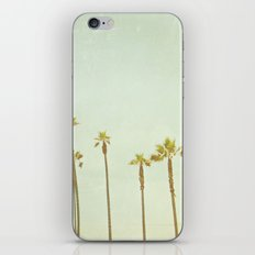 Palm Tree Dreams iPhone & iPod Skin