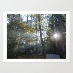Sun Peaking through Woods. Art Print