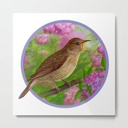 Spring nightingale Metal Print