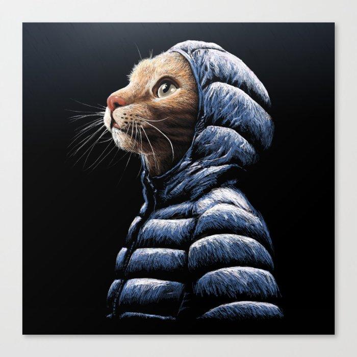 COOL CAT Leinwanddruck