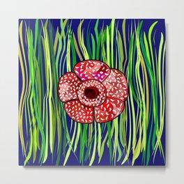 Flower-Rafflesia Arnoldii Metal Print