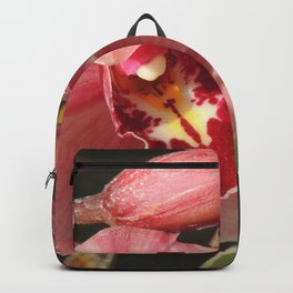 One Orchid on a Line Backpack