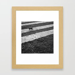 The Cats Collection (3) Framed Art Print