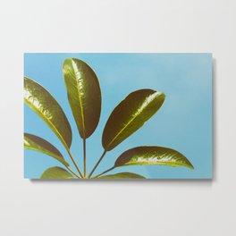 Green and blue by Larm Rmah Metal Print