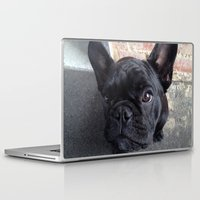 frenchie Laptop & iPad Skins featuring Frenchie by Gabrielle Burns