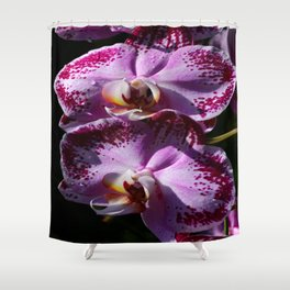 My Tender Love Shower Curtain