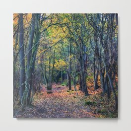 Forest of Dreams Metal Print