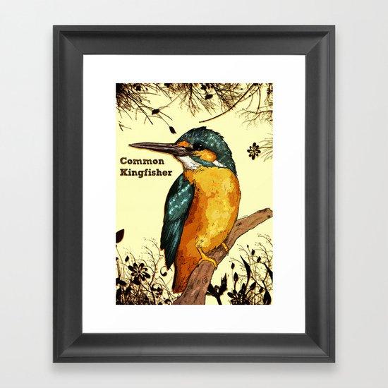 Common Kingfisher Framed Art Print