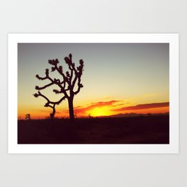 Sunset in the Mojave Art Print