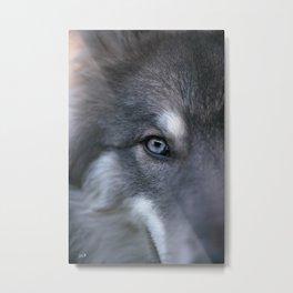 Universe Eye Metal Print