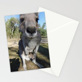 Cute Kanga and Joey Stationery Cards