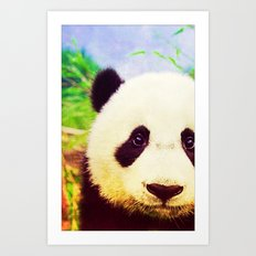 Panda - for iphone Art Print