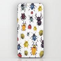 bugs iPhone & iPod Skins featuring Bugs by Marina Eiro