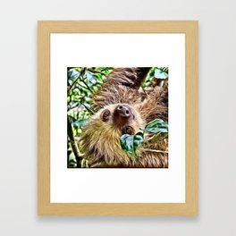 Painted Sloth Framed Art Print