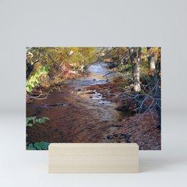 Mill River Mini Art Print