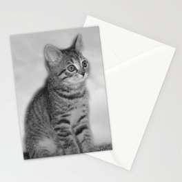 Little darling Stationery Cards