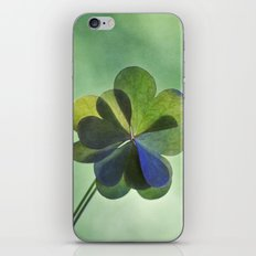 Love in love with love iPhone & iPod Skin