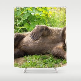 Spectecular Adolescent Brown Bear Amusingly Laying On Back In Green Pasture Ultra High Resolution Shower Curtain