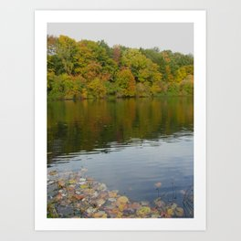 Colourful Reflection Art Print