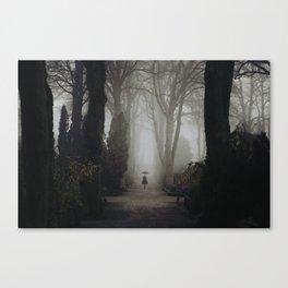 A walk through the graveyard Canvas Print