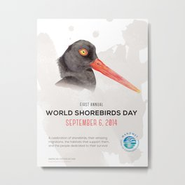 World Shorebird Day Poster-American Oystercatcher Metal Print