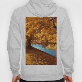 Perfect Autumn (Color) Hoody