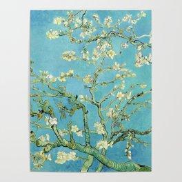 Vincent Van Gogh Almond Blossoms Poster