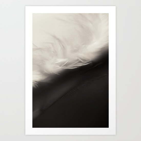 Feather Light in Black & White Art Print