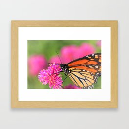 Butterfly Pink Floral by Reay of Light Photography Framed Art Print